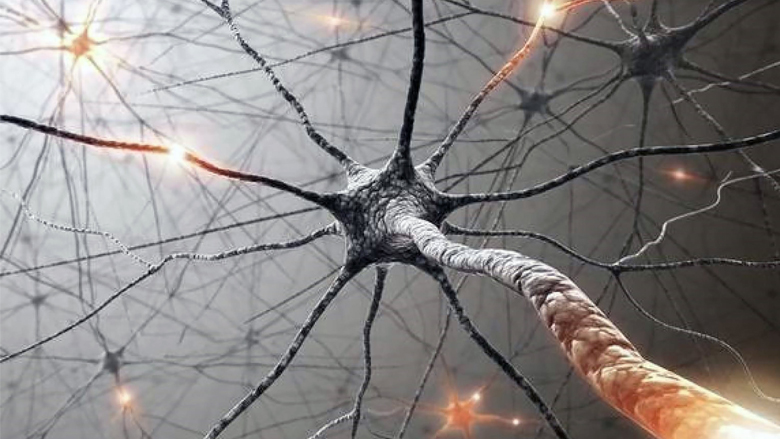 Stem Cell Treatment for Amyotrophic Lateral Sclerosis
