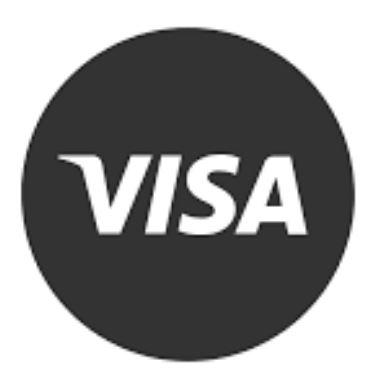 Medical Visa Process for International Patients