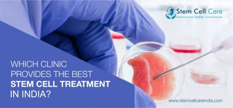 Which Clinic Provides The Best Stem Cell Treatment In India?